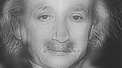 Who do you see? Einstein or Marilyn Monroe?